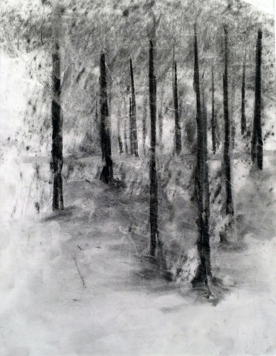 winter forest drawing