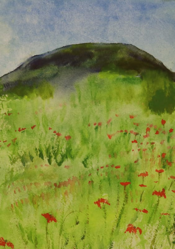 poppy field watercolor