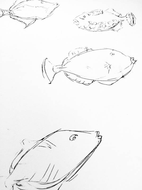 tropical fish sketches